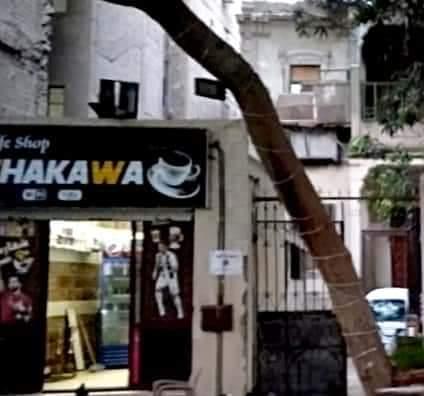 بالصور.. صاحب مقهى شهير بالمهندسين يتلاعب في أوراق مبنى أثري وتحويله إلى كافية بالقاهرة.