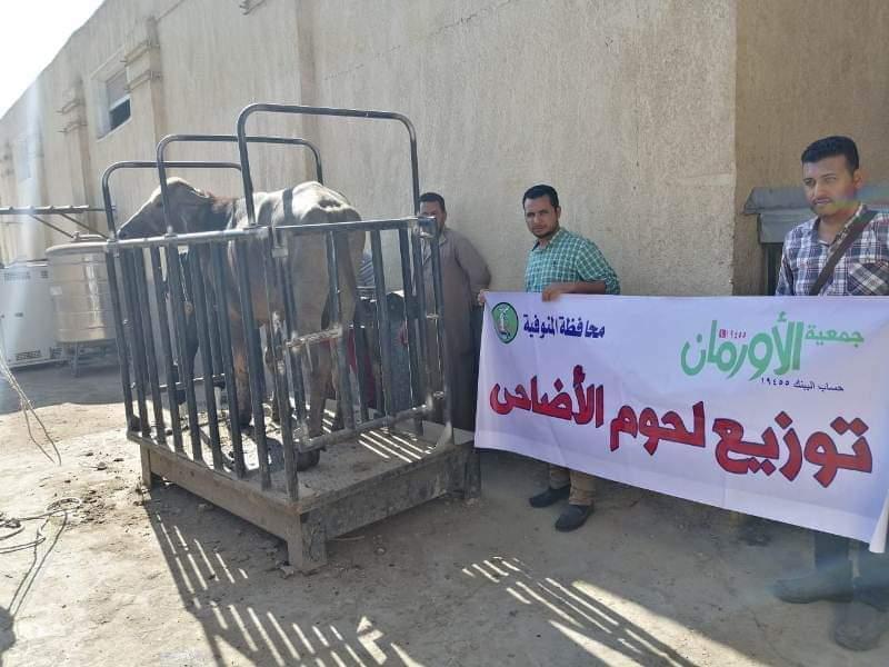 أورمان المنوفية : ذبـح ( 25 ) عجل أضاحي وتوزيعها علي الفئات الأكثر إحتياجاُ خلال أيام عيد الأضحي المبارك