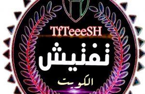 وكالة تفتيش الكويت الاخبارية تستعد لفتح مكتب اعلامي بالقاهرة