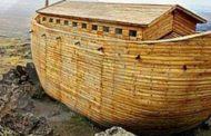 طوفان كورونا و سفينة النجاه
