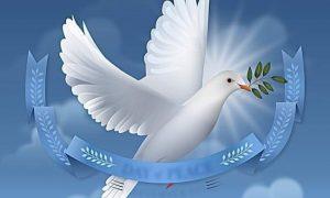 مفهوم السلام الحقيقي