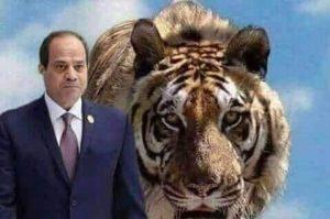 إنجازات الرئيس عبدالفتاح السيسي في ست سنوات