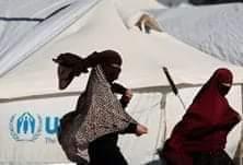 إعادة تأهيل لزوجات مقاتلين فى تنظيم داعش محتجزات فى مخيم روج تابع للأكراد فى شمال سوريا