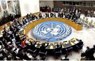 مجلس الأمن يدين بالإجماع مواقف أردوغان بشأن قبرص.