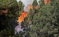 الحرائق التي اندلعت في غابات منطقة عكار شمالي لبنان لا ترال مشتعلة